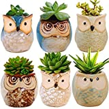 Floro Owl Planter Pots, Around 2.4x2.6 Inches, Flower or Bonsai Plant Ceramic Pots for Indoor or Outdoor, Gorgeous Owl Design