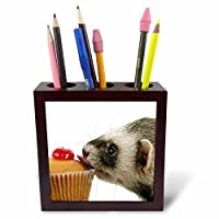 3drose Ph _ 17288 _ 1 Ferret Eating cupcake-tileペンホルダー、5インチ