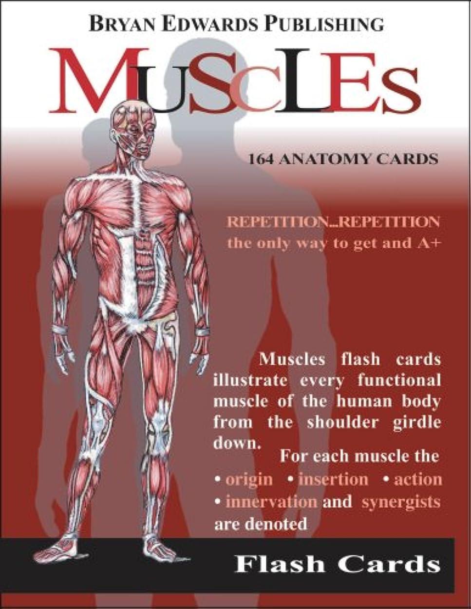 韓国親修正するThe Muscles (Flash Anatomy)