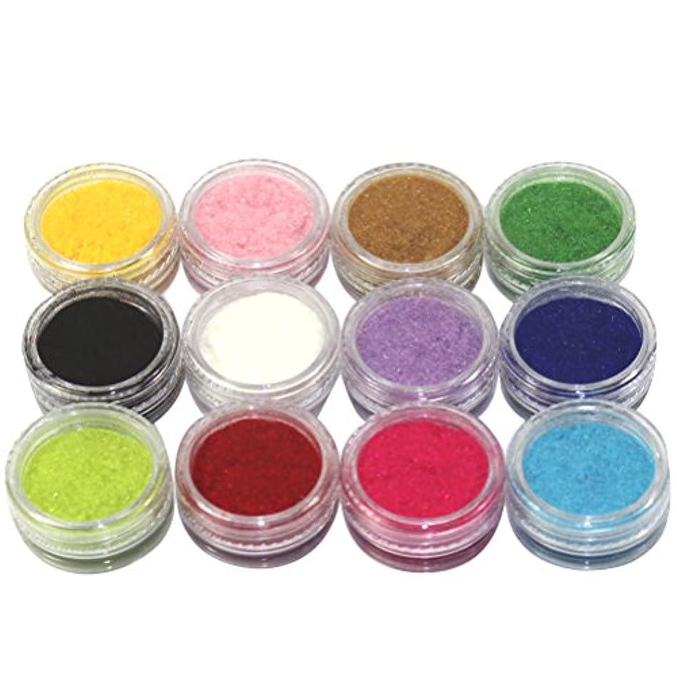 リーガンアボート壁(メイクアップエーシーシー) MakeupAccネイルアートDIY ふわふわベロア調ネイルベルベットパウダー フロッキーパウダー ネイルデコセット 12色入り ネイルパーツ コンテナケース付き [並行輸入品]