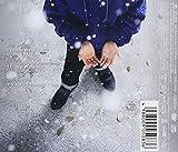 冬が終わる前に(初回生産限定盤)(DVD付)