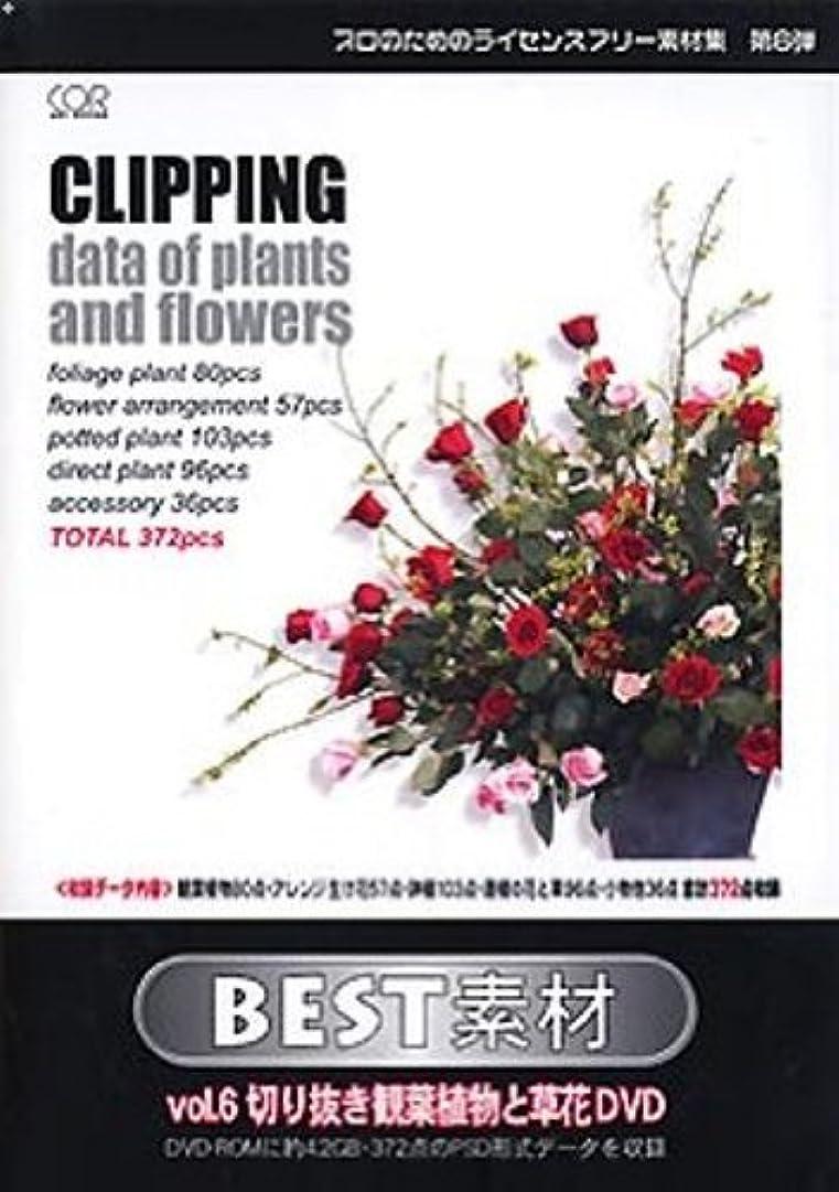 安いです災難不純BEST素材 vol6 切り抜き観葉植物と草花