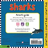 Sharks: With More Than 30 Stickers (Smart Kids) 画像