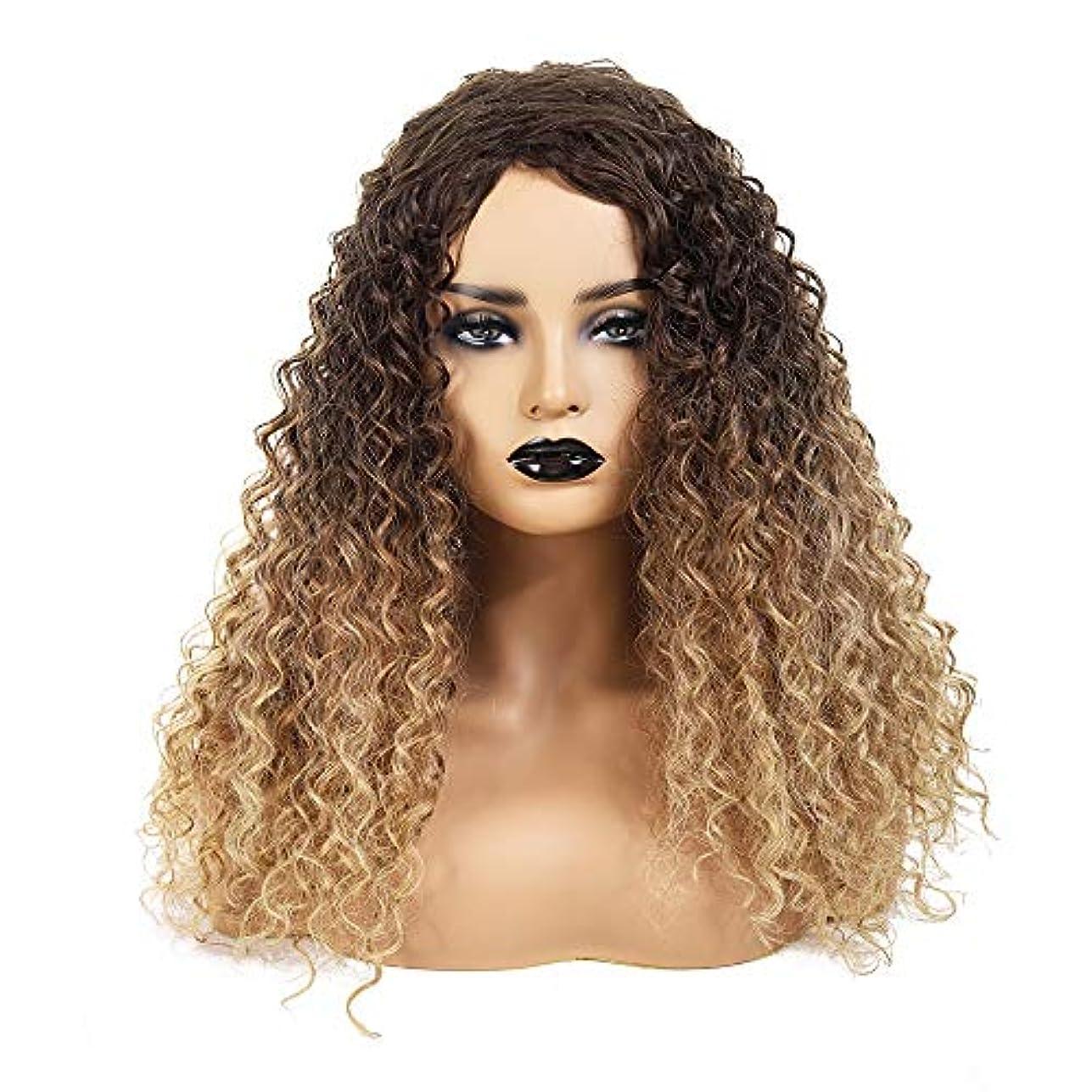 一口踊り子添加WASAIO アフロ巻き毛ブラウンルーツグラジエントブロンド耐性熱合成ふわふわウィッグアクセサリースタイル交換用ファイバー18インチ (色 : Blonde)