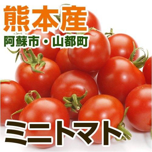 あいあい 熊本県産 ミニトマト (熊本阿蘇市・山都町産)150g 【野菜セット同梱で】【九州 野菜】【とまと】【ミニとまと】【フルーツトマト】