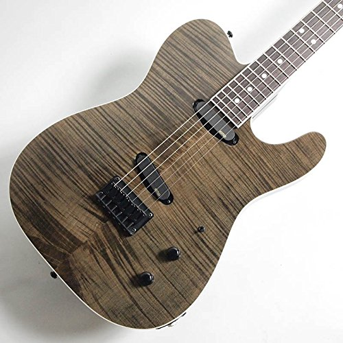 FERNANDES/エレキギター TEJ CUSTOM SBK プロトタイプ #2【フェルナンデス】【Made in Japan】