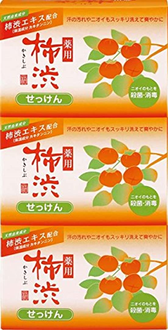 対応する領事館化学熊野油脂 薬用 柿渋石けん 100g×3個