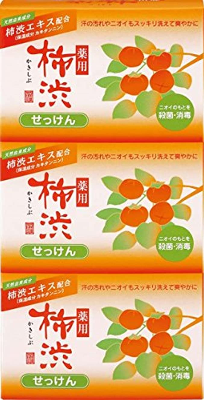 熊野油脂 薬用 柿渋石けん 100g×3個