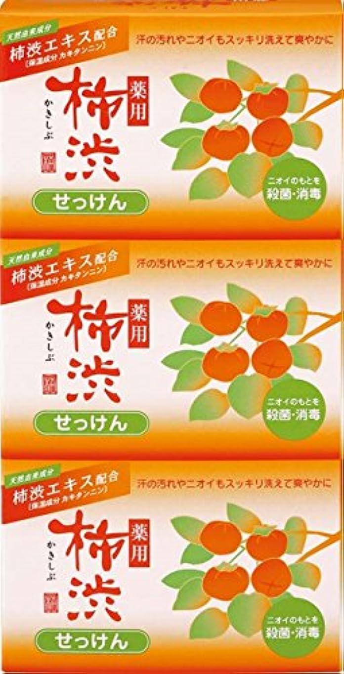 石広告主フリル熊野油脂 薬用 柿渋石けん 100g×3個