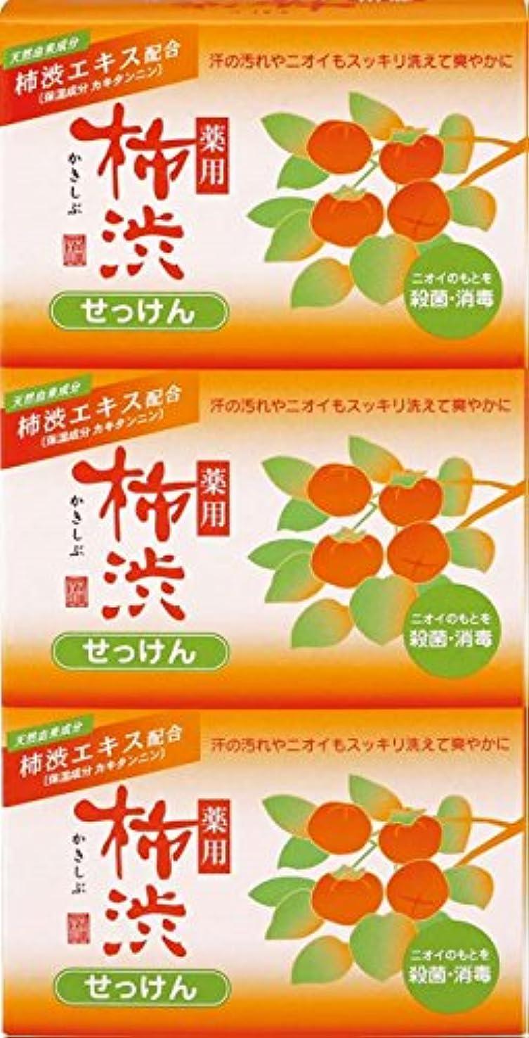 カロリー修復砂漠熊野油脂 薬用 柿渋石けん 100g×3個