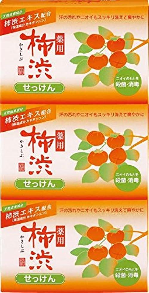 商業のマークダウンチョコレート熊野油脂 薬用 柿渋石けん 100g×3個