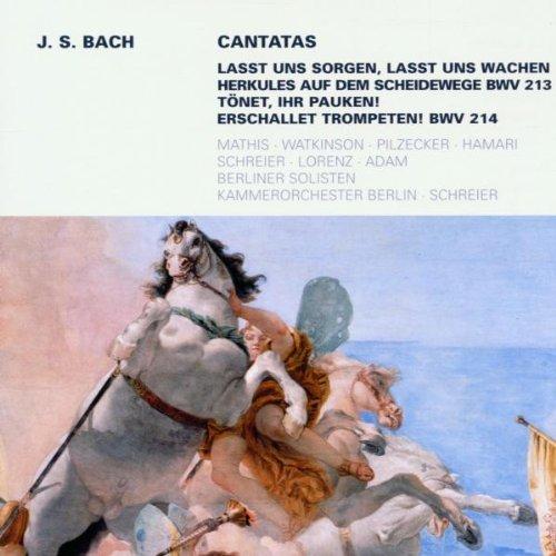 Secular Cantatas Bwv 213/21