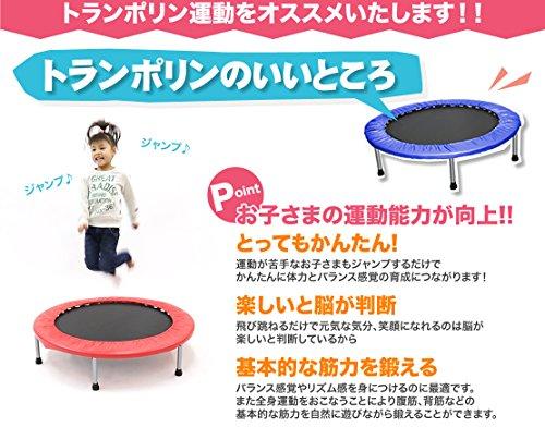PURE RISE(ピュアライズ) トランポリン 折りたたみ式 子ども 大人 エクササイズ 102cm スター (オレンジ×スター)