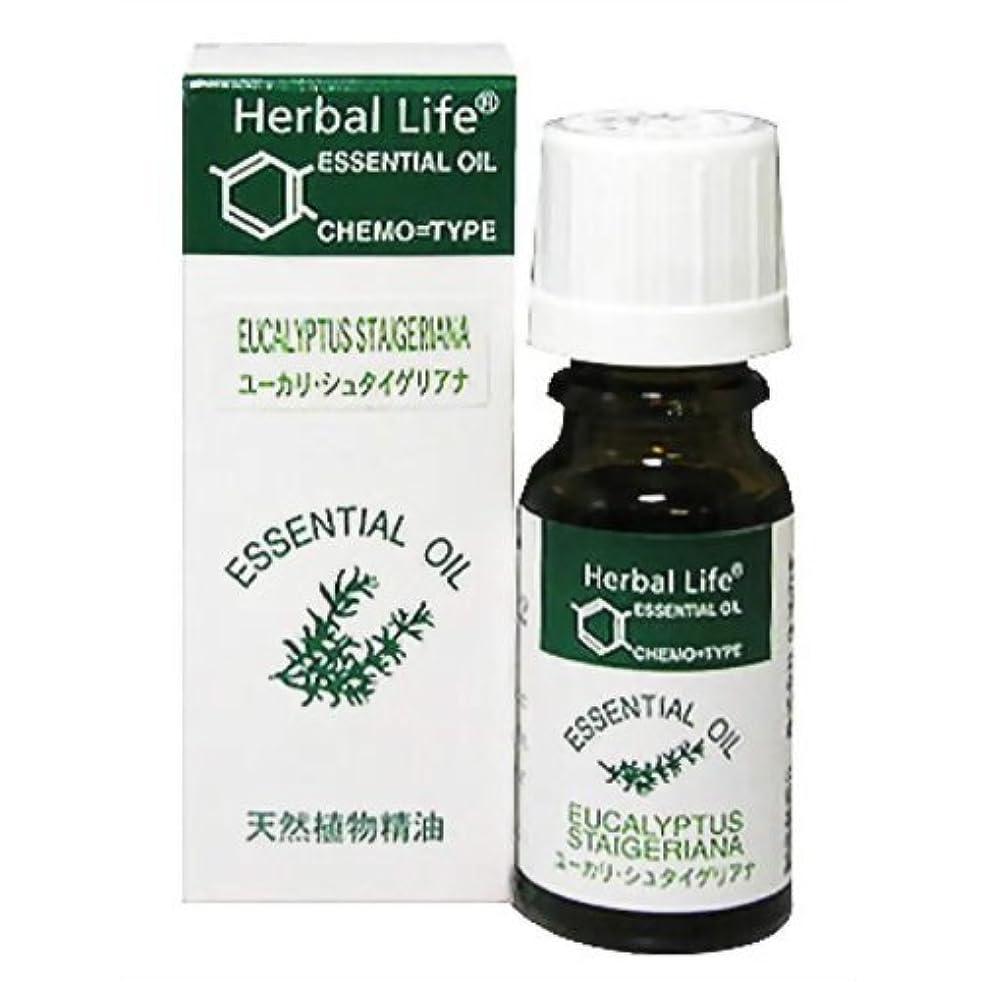 折り目反対した市場生活の木 Herbal Life ユーカリ?シュタイゲリアナ 10ml