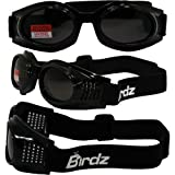 Birdz Eyewear KITEオートバイゴーグル KITESM