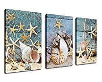 Wall Art Canvas Prints Starfish Shell Fishing Net Stone on Beach Sands Framed Ready to Hang - 3 Panels Extra large Contemporary Painting Giclee P on Canvas for Home and Office Decoration [並行輸入品]
