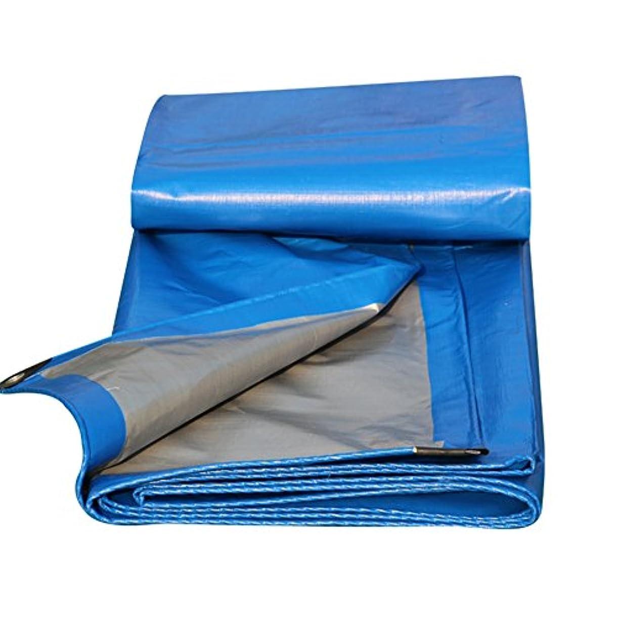 励起帳面テント防水シート肥厚化絶縁防水日焼け止めキャノピー布トラックプラスチック布ポンチョ、利用可能な (Size : 3X5M)