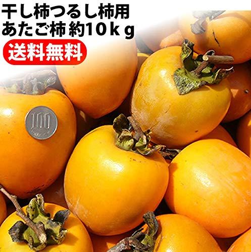 愛媛県 丹原産 大玉 あたご柿 約10kg 枝付渋柿 干し柿 つるし柿 11月下旬頃から発送予定