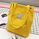 Alextreme 1pcs Women Corduroy Chic Shoulder Shopping Tote Package Crossbody Bags Handbag