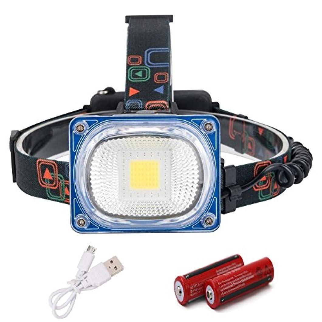 バレーボール夜間変位XIAOBUDIAN LED広角ヘッドランプ3モードUSB充電式ヘッドライトキャンプヘッドトーチLED警告ヘッドライトランタン18650 (サイズ さいず : B)