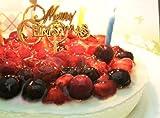 誕生日ケーキ 4種のベリーチーズケーキ (ローソク・プレート・手紙付) フルーツケーキ