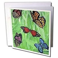 Amy Hurley Heath動物–その他–複数のカラフルな蝶とグリーンGrassy背景–グリーティングカード Set of 12 Greeting Cards