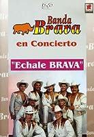 En Concierto Echale Brava [DVD] [Import]