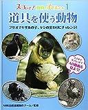 スゴいぞ!動物の子どもたち〈1〉道具を使う動物―フサオマキザルの子、ヤシの実わりにチャレンジ!