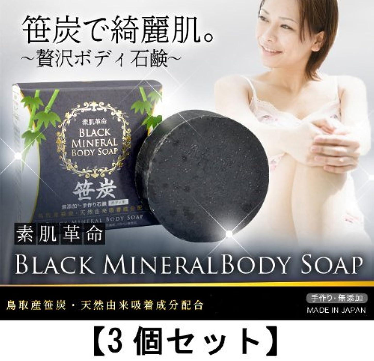 重さ不当広々とした素肌革命ブラックミネラルボディソープ 3個セット(天然笹炭配合無添加石鹸)