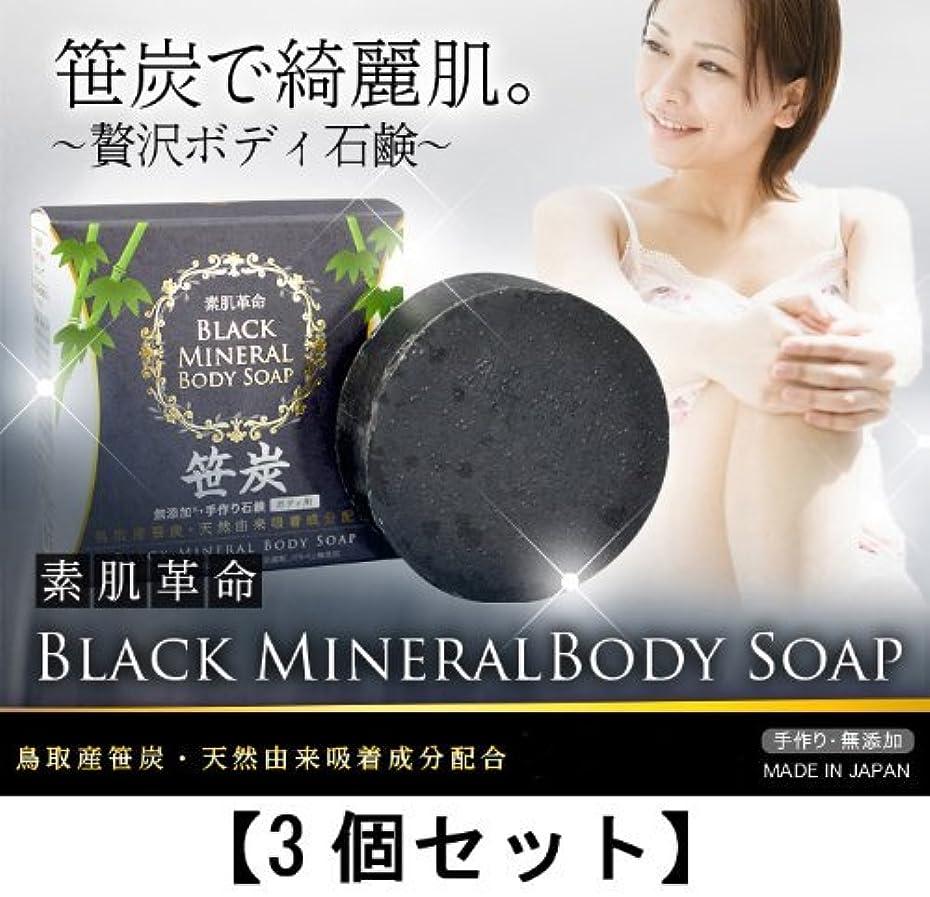 歪める夜間バクテリア素肌革命ブラックミネラルボディソープ 3個セット(天然笹炭配合無添加石鹸)
