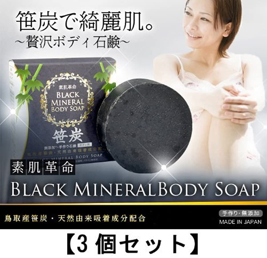 積極的に完了適合素肌革命ブラックミネラルボディソープ 3個セット(天然笹炭配合無添加石鹸)