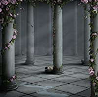 グレー写真背景幕ホール列とピンクバラ花ゴシック背景for Photo Studio 8x 8ft