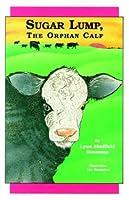 Sugar Lump, the Orphan Calf