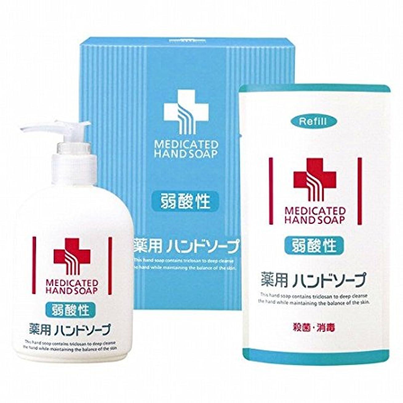 モディッシュ常習的ことわざnobrand 弱酸性 薬用ハンドソープセット(21957015)