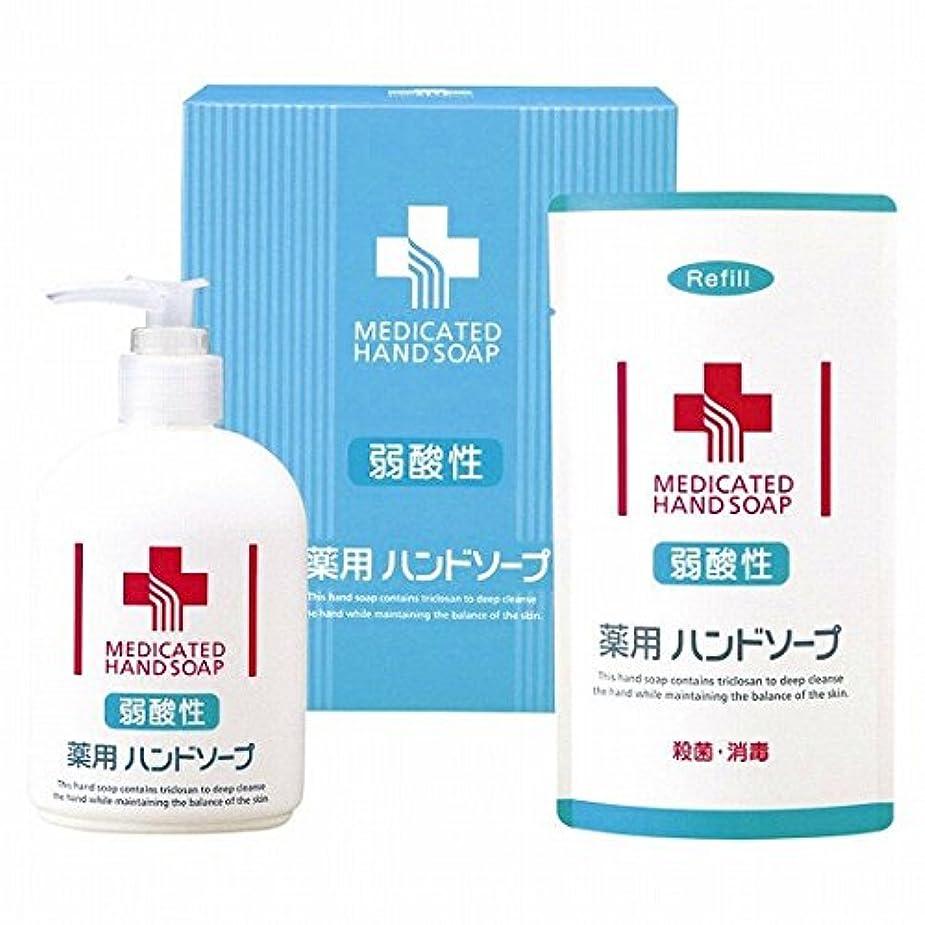 吸収剤ペルートリップnobrand 弱酸性 薬用ハンドソープセット(21957015)
