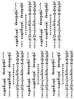 (キングホース) KING HORSE タトゥーシール 梵字 英文字 Characters-13【小型・5枚セット】-8種類 (ht1120)