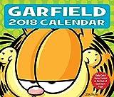 Garfield 2018: Original BrownTrout-Tagesabreisskalender [Tagesabreissalender]