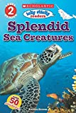 Splendid Sea Creatures (Scholastic Readers)