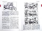 トリガーポイント・マニュアルIII IV 画像