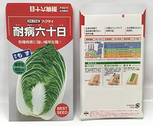 サンガーデン ハクサイの種 耐病六十日白菜 2.5ml