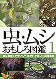 虫・ムシ おもしろ図鑑 1 森の忍者!ナナフシ~驚きいっぱい!巨大昆虫 [DVD]