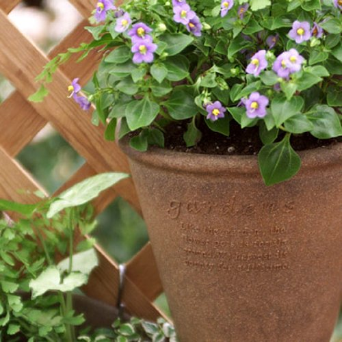 gardens(ガーデンズ) 鉢 エコポット浅型 7号 ナチュラル