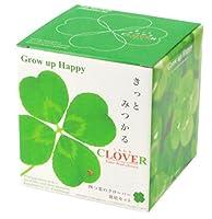 [植物 栽培 栽培セット 手軽 癒し グリーン 可愛い ハート]<br>きっと見つかる♪四つ葉のクローバー栽培セット
