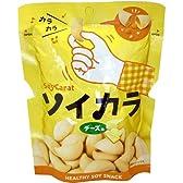 大塚製薬 ソイカラ チーズ味 1袋入