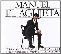 Great Masters of Flamenco Vol.8 by Manuel Agujetas (2013-05-03)