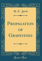 Propagation of Grapevines (Classic Reprint)