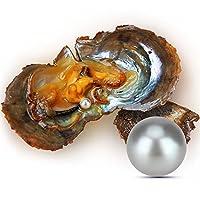 Lgsy 30個7–8mmグレーアコヤラウンド養殖真珠Oysters in海水