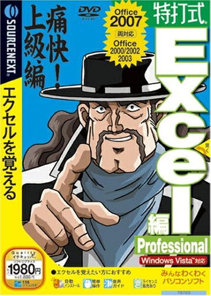 ペインティング気まぐれな豊かな特打式 Excel編 Professional (説明扉付スリムパッケージ版)