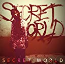 SECRET WORLD TYPE-C(通常盤)