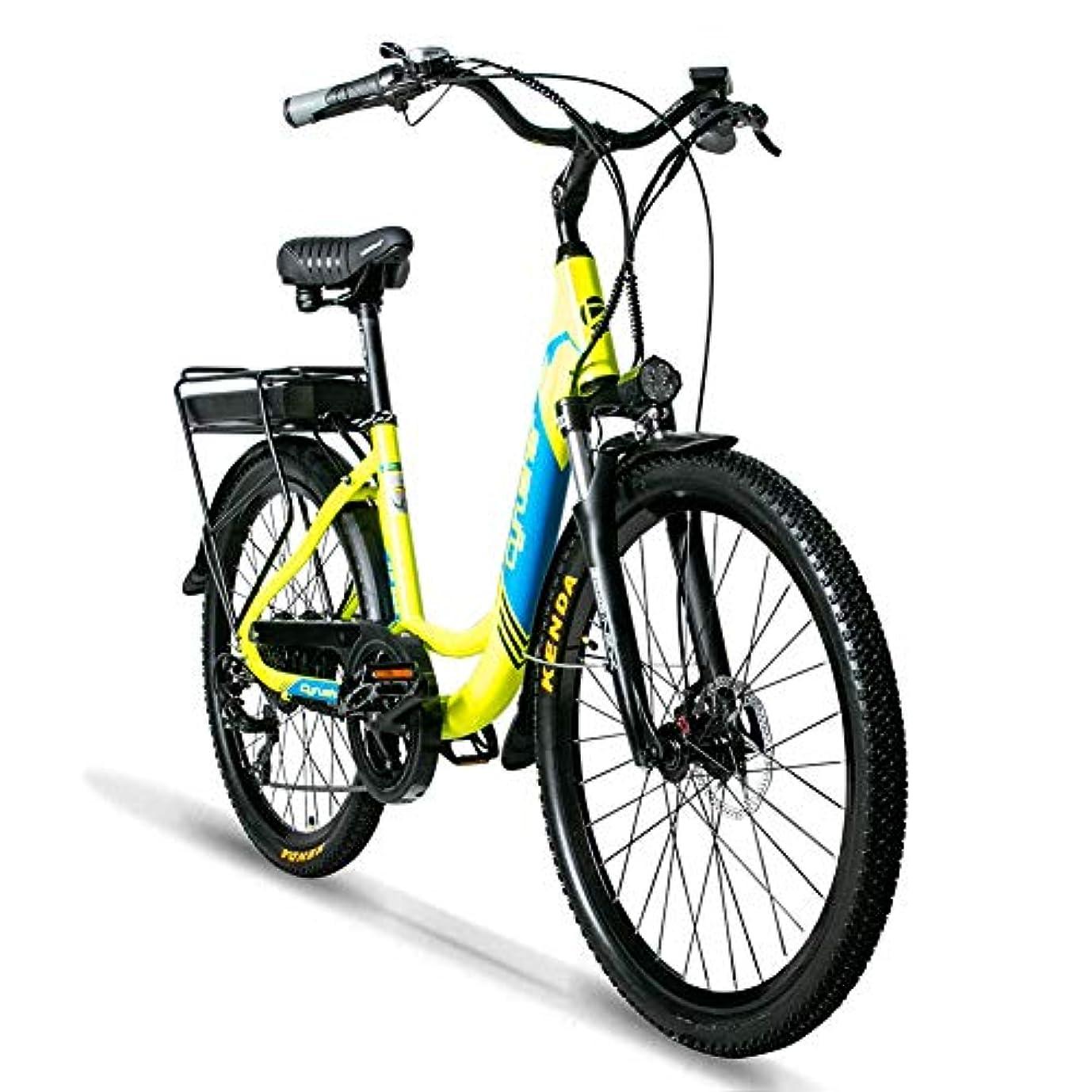 博覧会追放レオナルドダExtrbici XF200 アシスト自転車 女性専用自転車 MTB 26インチマウンテンバイク 500Wモーター 48V*14AHリチウムバッテリー 専用充電器付 荷台付き